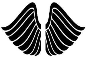 La symbolique des ailes.