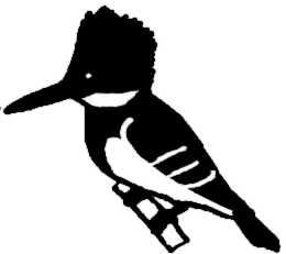 La symbolique de l'alcyon.