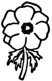 La symbolique de l'anémone.