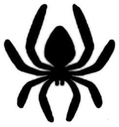 La symbolique de l'araignée.