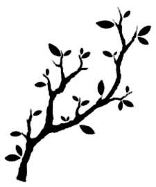 La symbolique de la branche.