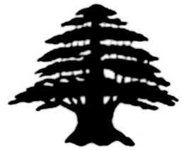 La symbolique du cèdre.