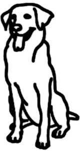 La symbolique du chien.