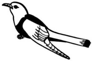 La symbolique du coucou.