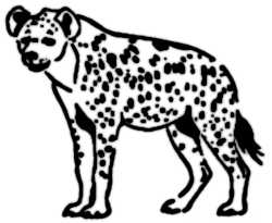 La symbolique de la hyène.