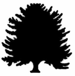 La symbolique de l'if.