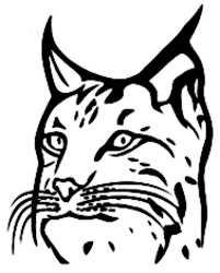 La symbolique du lynx.