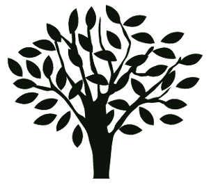 La symbolique de l'olivier.
