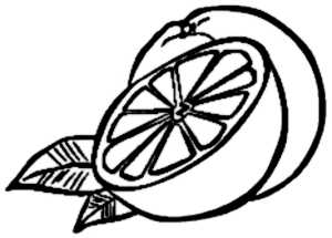La symbolique de l'orange.
