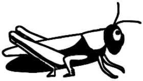 La symbolique de la sauterelle.