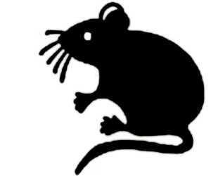 La symbolique de la souris.