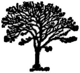 La symbolique du sycomore.