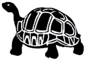 La symbolique de la tortue.