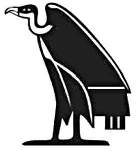 La symbolique du vautour.